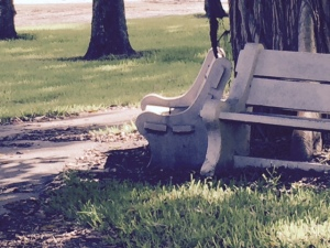 wooden bench for people to sit at under the shade of a tree